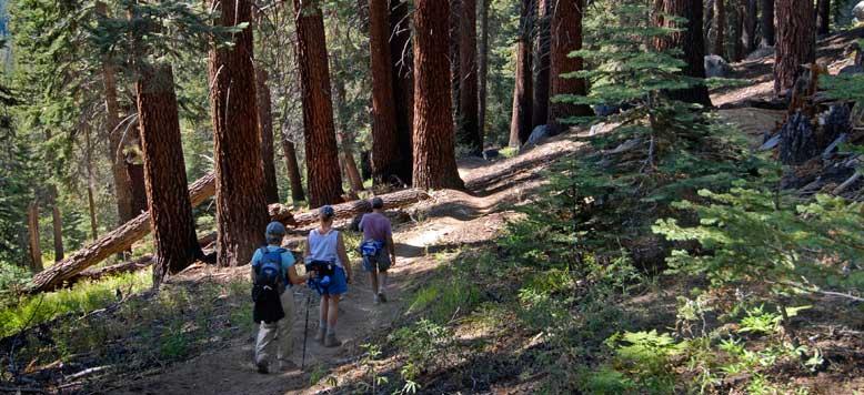 Activities Sequoia High Sierra Camp