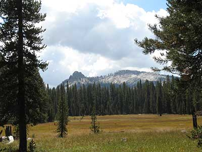 meadows in Sequoia National Park